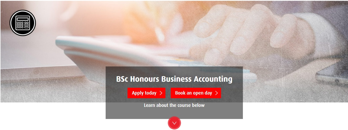 BSc Honours Business Accounting