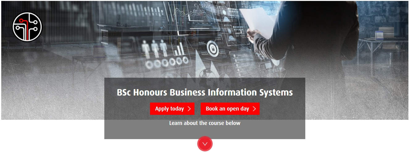 BSc Honours Business Information Systems