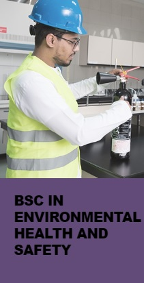 BSc in Environmental Health and Safety