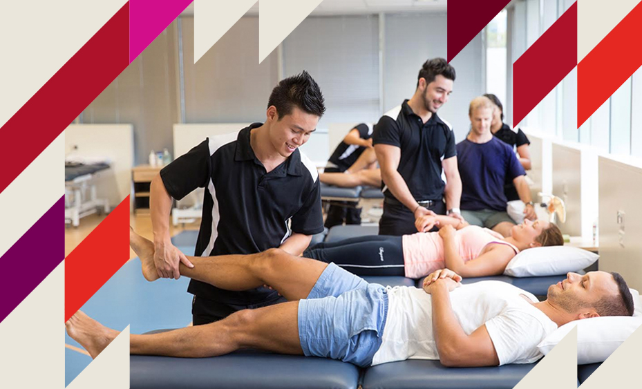 Bachelor of Science in Physiotherapy