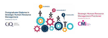 Human Resource Strategy and Implementation